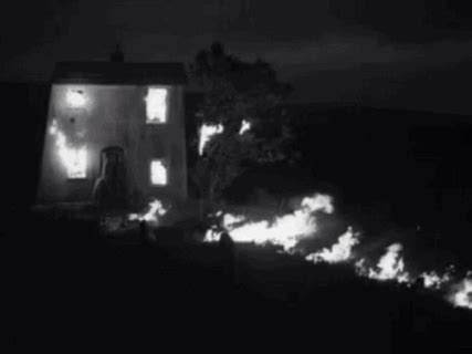 My neighbors house is on fire essay